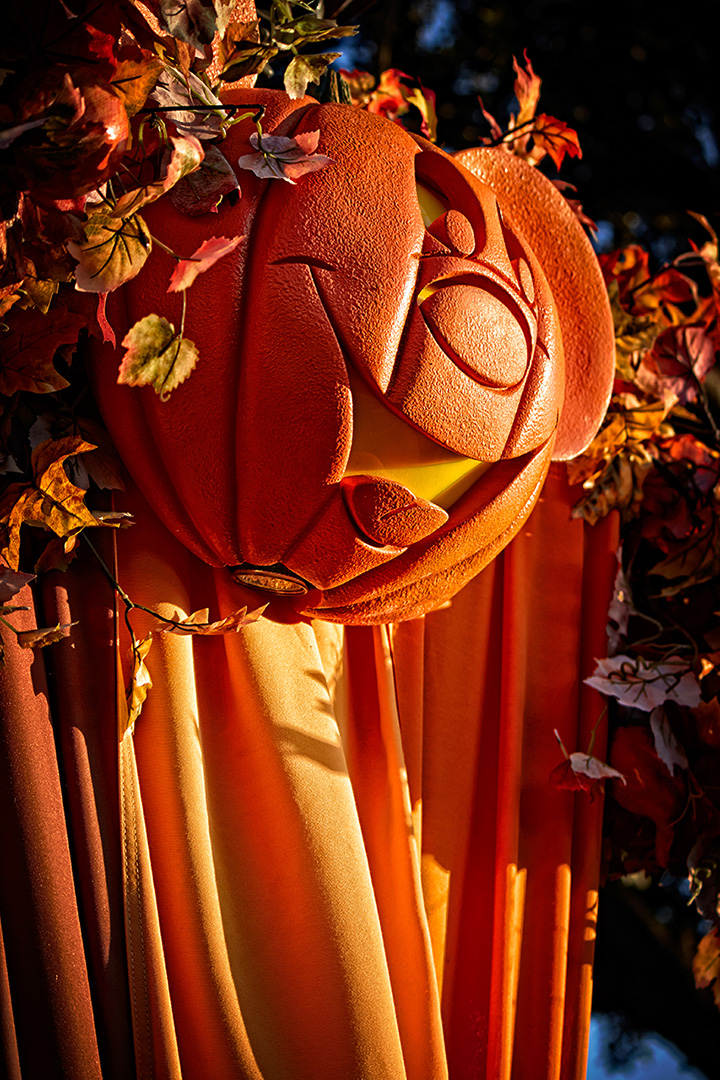 Disney Photography, Disney World Photography, Disneyland Photography, Disney Photos, Disney Pictures, Walt Disney World, The Magic Kingdom, Walt Disney, Mickey Mouse, Orlando, Florida, Theme Park,  Mickey Pumpkin, Halloween